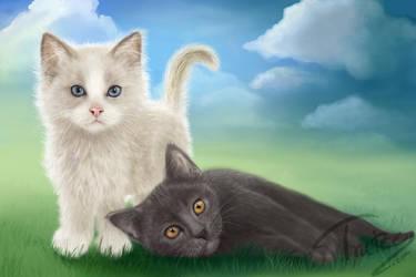 Future kitten by Trutze