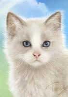 Future kitten detail by Trutze
