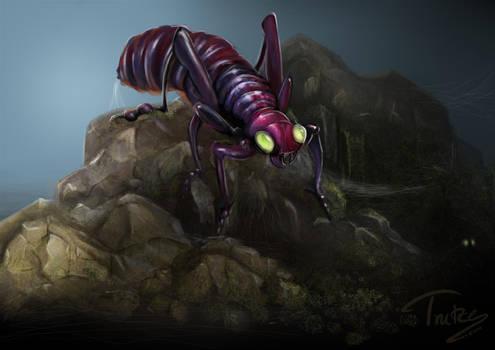 sketchy bug