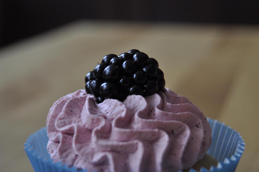 handpicked blackberries by Trutze