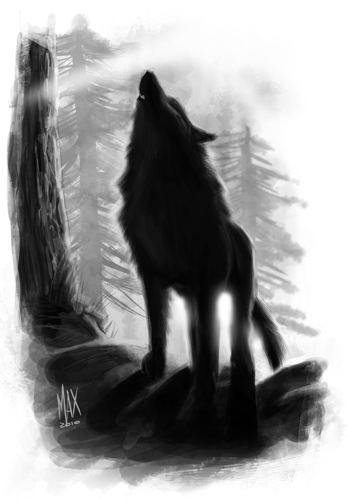 Black Wolf Howling Drawing Black Wolf by M...
