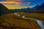 Alpine moorland II
