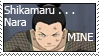 Shikamaru is MINE by shifaikia