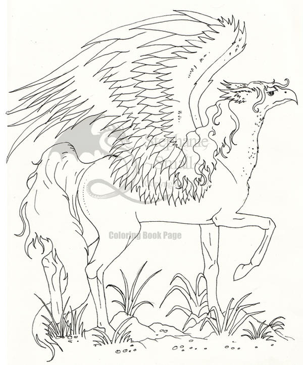 Coloring Book Hippogriff By StephanieSmall