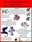 Felshae Shapeshifting Cat Breed Sheet by StephanieSmall