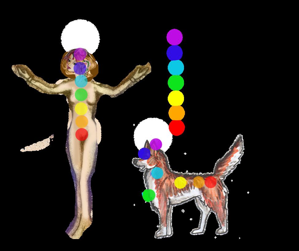 Awesome Wolf Knot Anatomy Embellishment Anatomy And Physiology