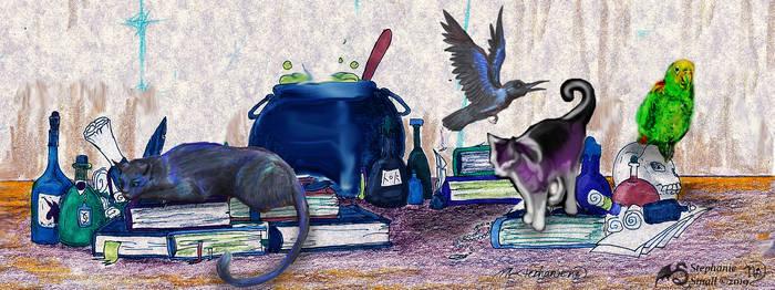 Familiars Cat Feline Witch Crow Parrot bird animal by StephanieSmall