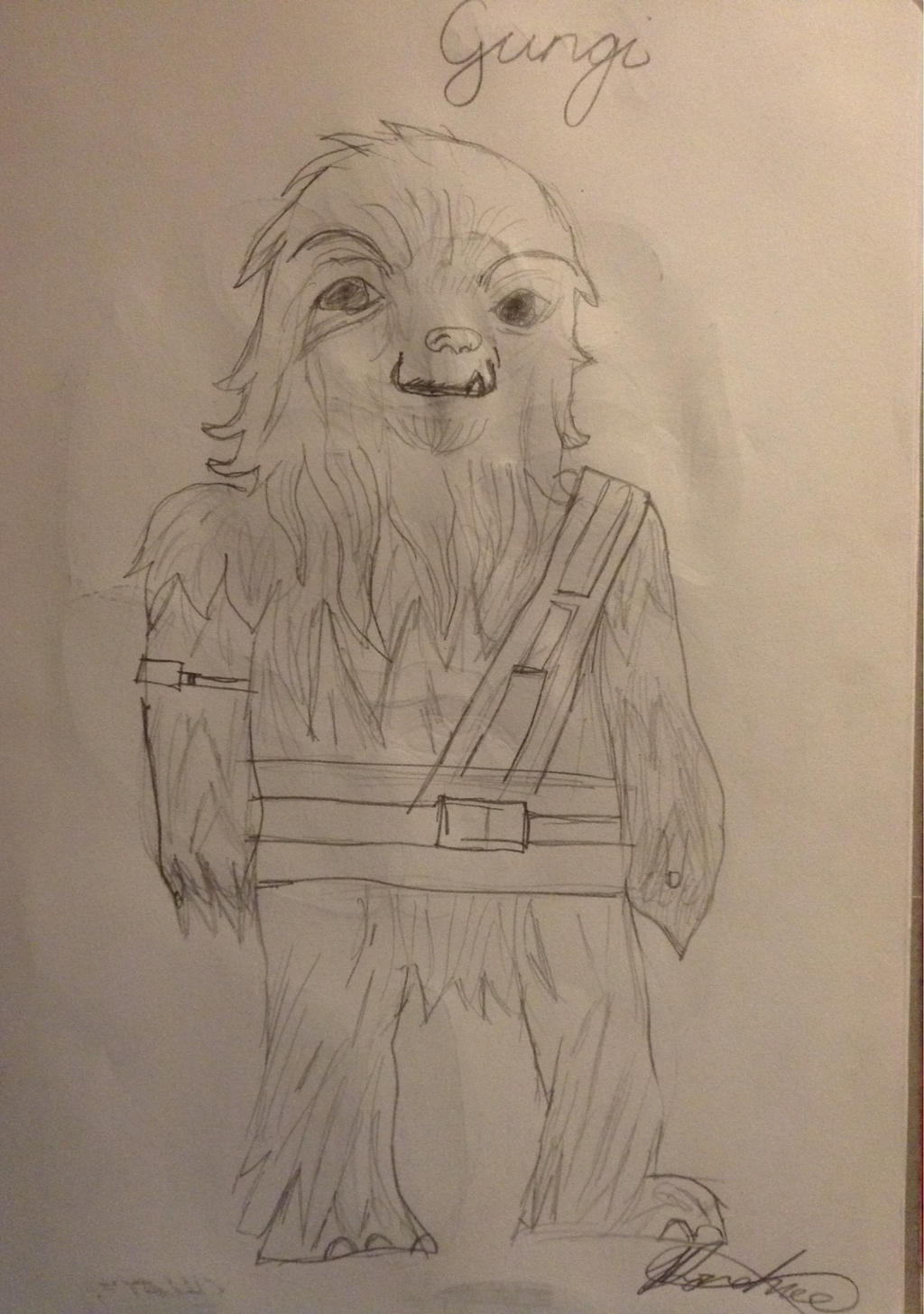 Gungi Jedi Youngling By Jdonehue On Deviantart A rare example of a wookiee in the jedi order, gungi had a lively, inquisitive face whose wide smile was punctuated with a snaggletooth emerging from his lower jaw. deviantart