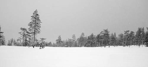 Snow Return by Adam-F