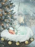 Christmas Fairy 2 by Beeroxxx