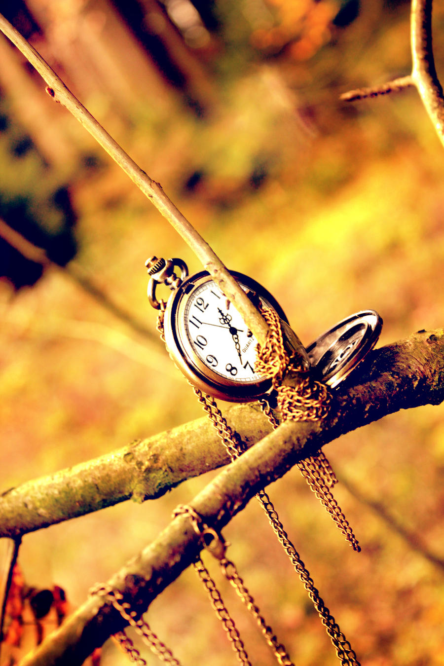 Herbstliche Uhr by Silvermoonswan