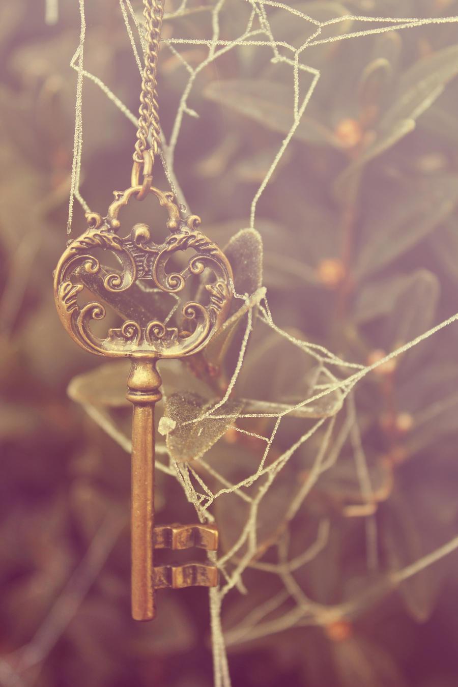 Wonderful Key by Silvermoonswan