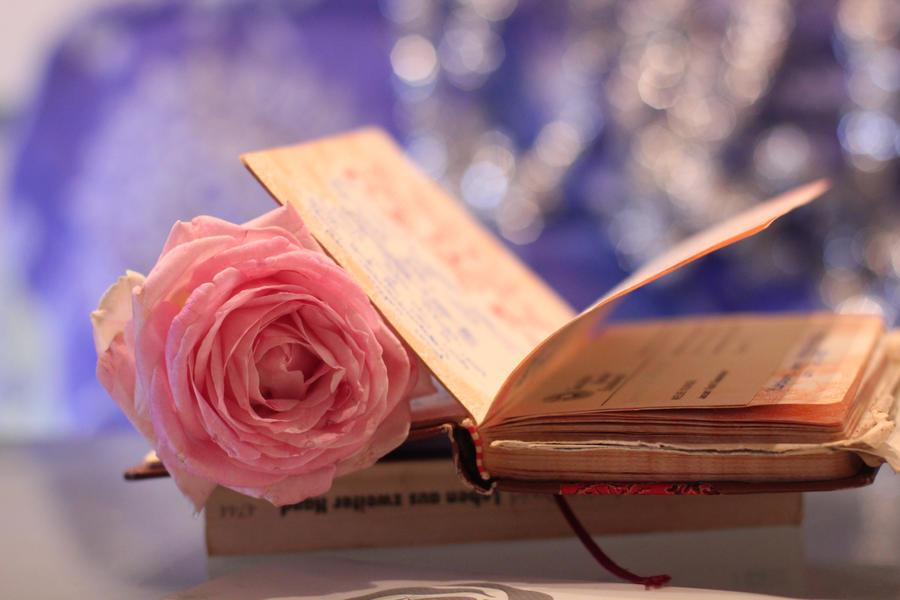 Dear Diary by Silvermoonswan