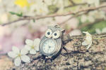 Time of lovely flowers