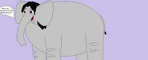 Kingdom Elephants 05