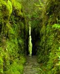 Green Gap Re-Take