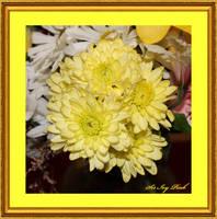 Birthday Flowers 07-17-2017 1092aac by SirIvyPink