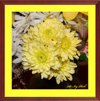 Birthday Flowers 07-17-2017 1092aab by SirIvyPink