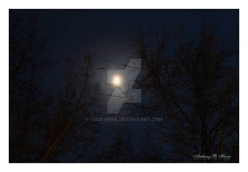 Moon 12-21-2020 (1)