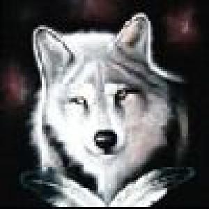 Taigennin's Profile Picture