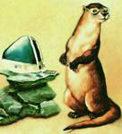 Otter in Specs by karracaz