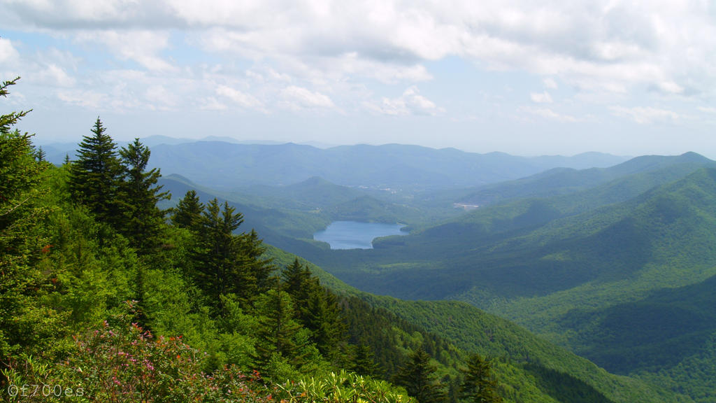 Mt Mitchell - Burnette Res by f700es