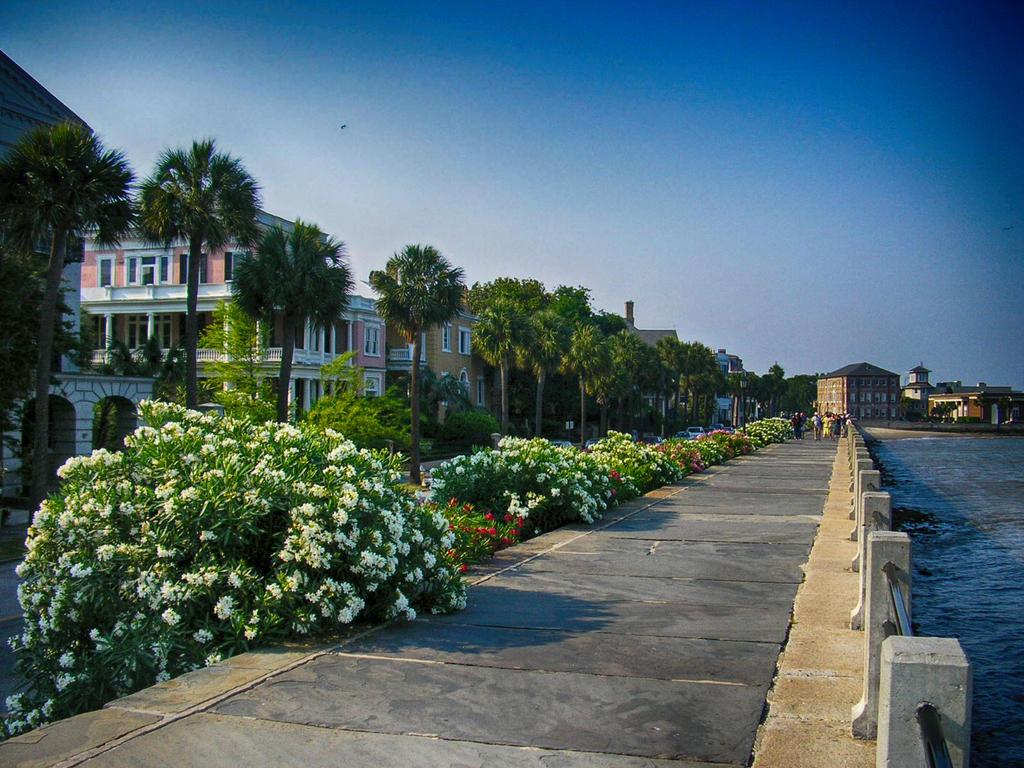 Charleston Battery by f700es