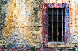 383- prisoned in color by kalemkar