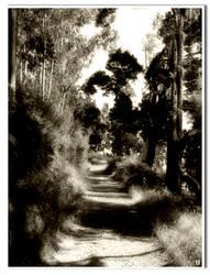 Camino de la sierra by lunallena772000