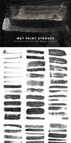 Wet Paint Strokes PS Brushes by xgfxws