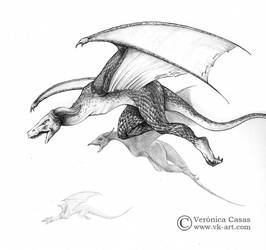 Dragon enemigo by VKart