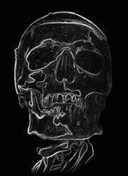 skull drawing 2 by hg-art