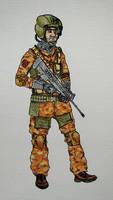 CSAT iranian soldier
