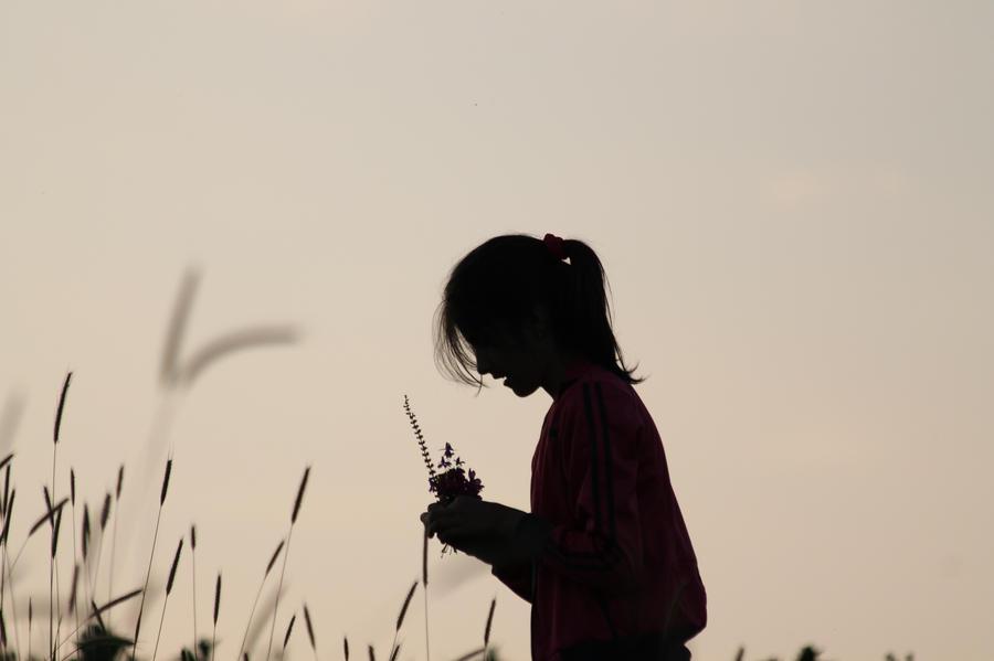 Girl in the fields by ddmkro