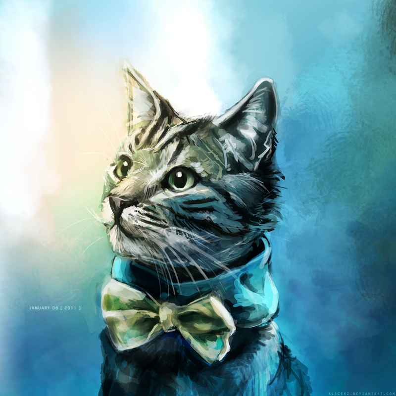 Handsome Cat by alicexz