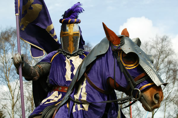 Purple knight by chavi-dragon