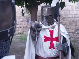 Templier Knight by chavi-dragon