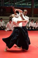 Aikido   naname kokyu nage by chavi-dragon
