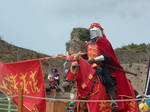 Parade in West France 14