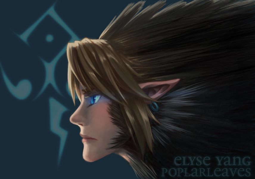Legend of Zelda - Twilight Princess - Wolf Link by poplarleaves
