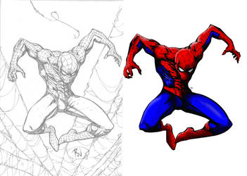 Spidey lines and colors by Sylvlance