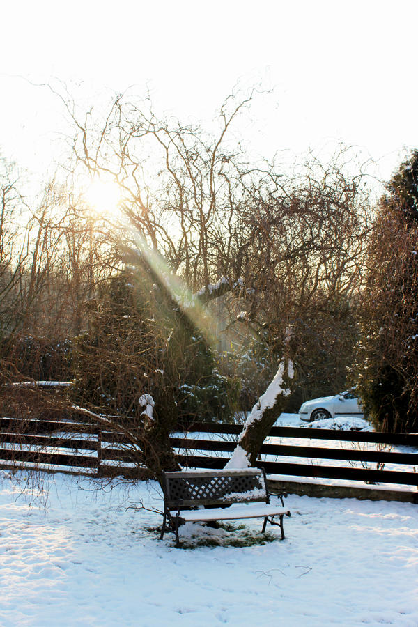 Winter bench by Francyssa
