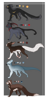 Cat Adoptions *CLOSED*