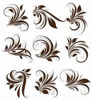 Vector Floral Elements for Design