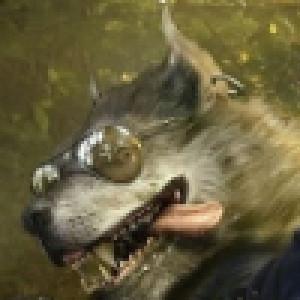 YaZoV's Profile Picture