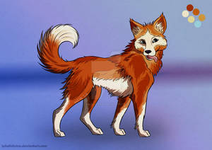 ADOPT AUCTION (closed) Ginger dog