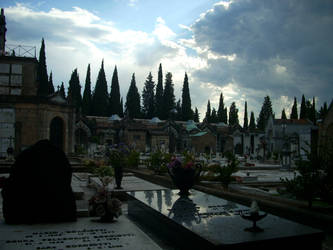 Cemetery in Florence by veronicakni