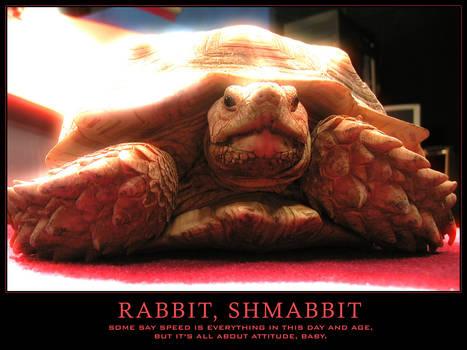 Rabbit, Shmabbit