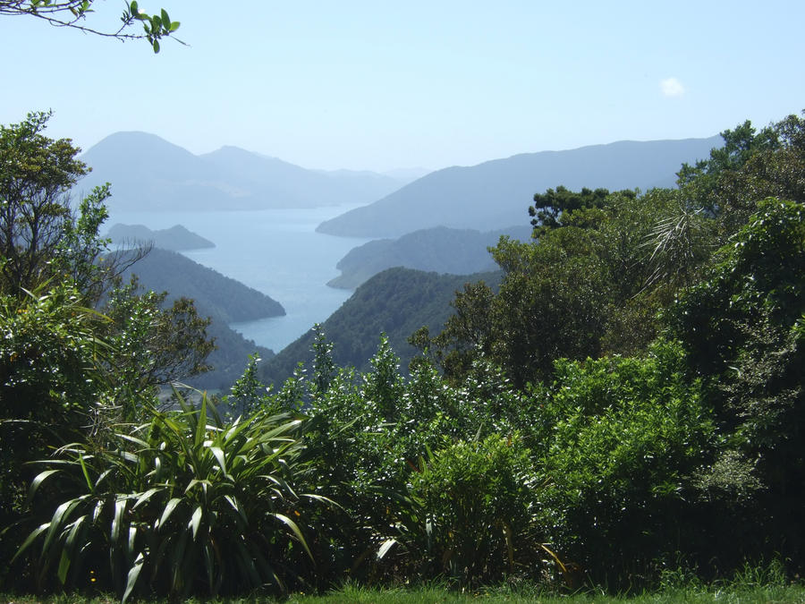 Marlborough Sounds New Zealand  City new picture : Marlborough sounds New Zealand by whorecrimson on deviantART