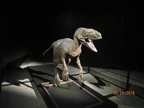 JP Velociraptor Animatronic